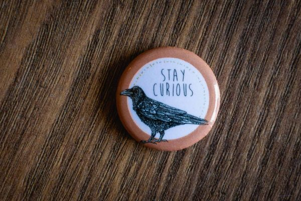 """Stay Curious"" Pin by Hello Yellow Canary"