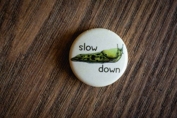 """Slow Down"" Pin by Hello Yellow Canary"