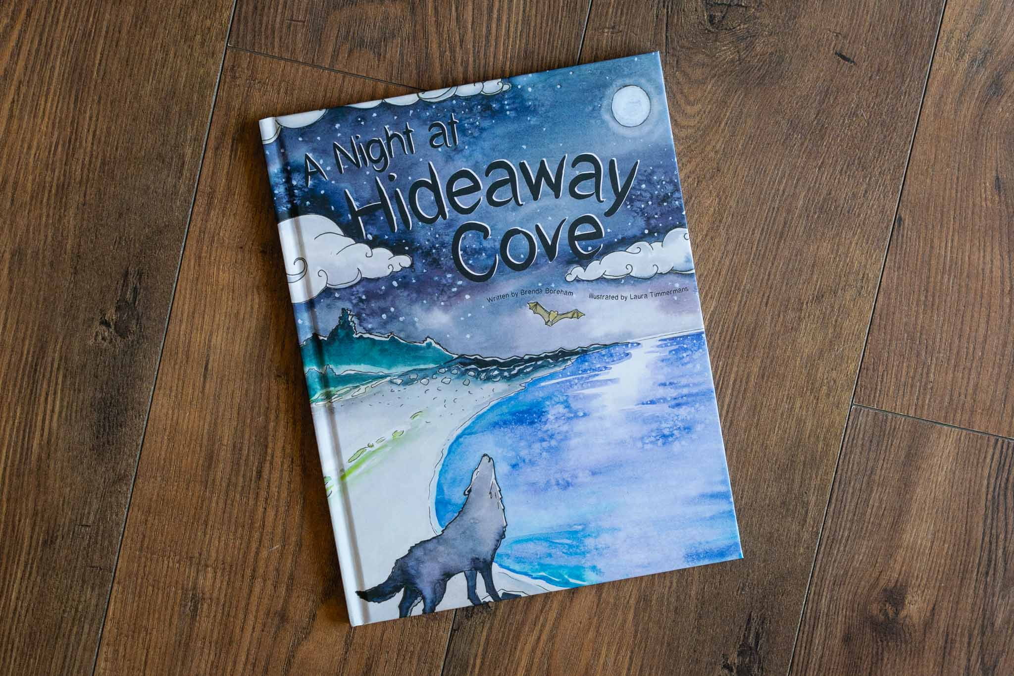 A Night At Hideaway Cove Book by Strong Nations